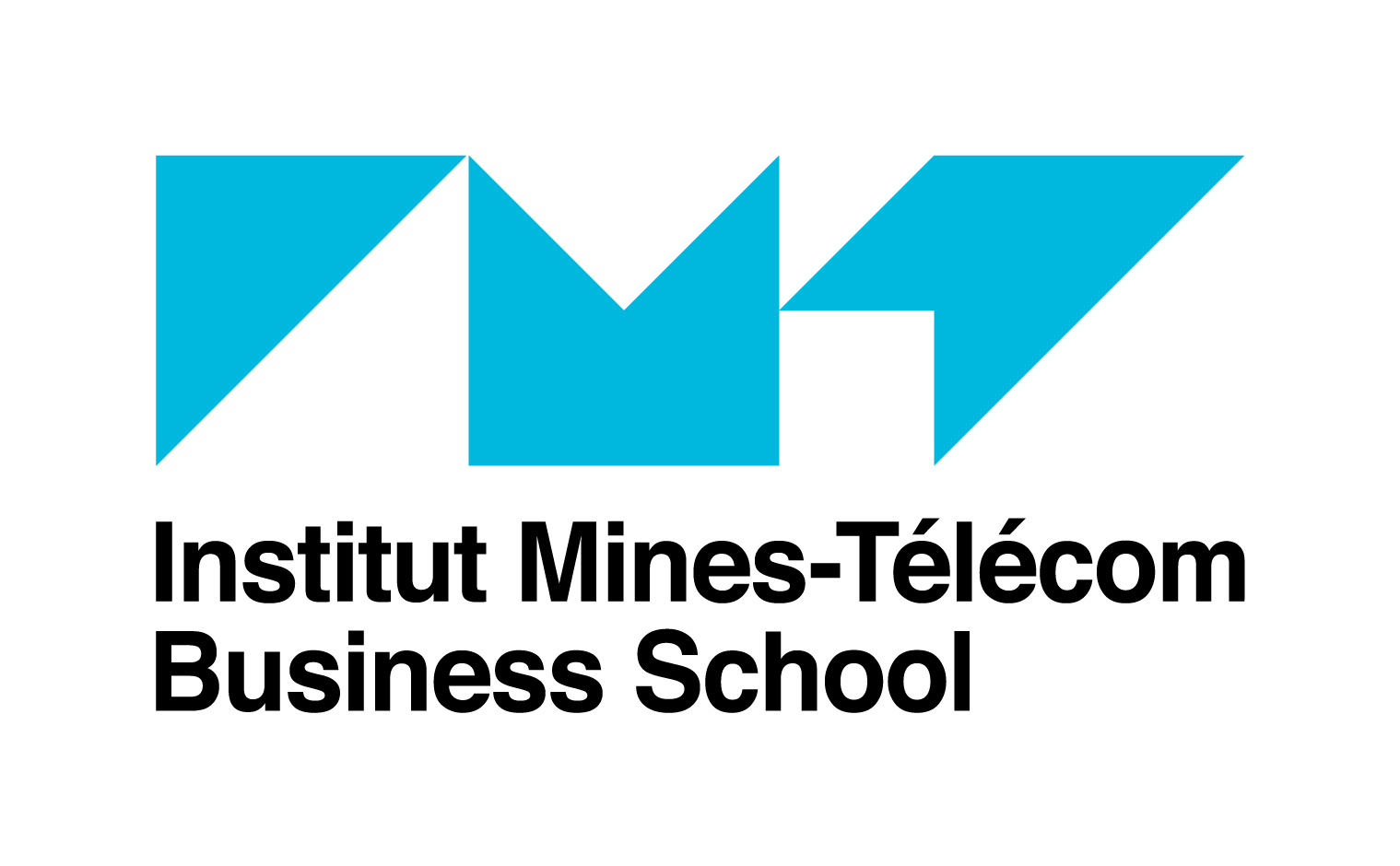 Telecom ecole de management institut mines t l com n 16 - Classement cabinet de conseil en systeme d information ...
